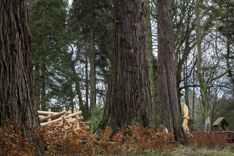 timberplay scotland_dumfries house_dapple photography 01